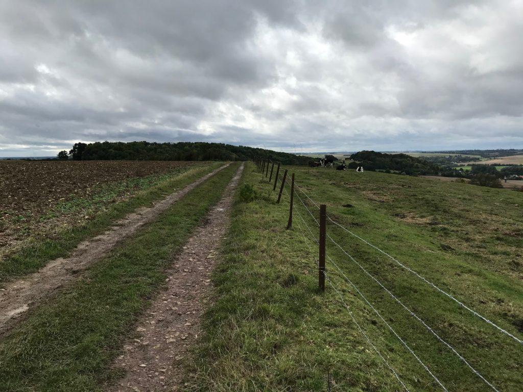 Trail de la Cervoise